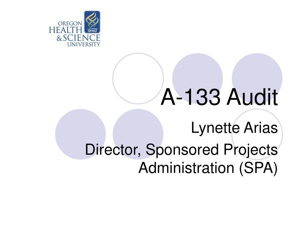 a 133 audit l.