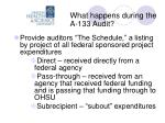 what happens during the a 133 audit11