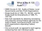 what is the a 133 audit