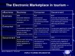 the electronic marketplace in tourism