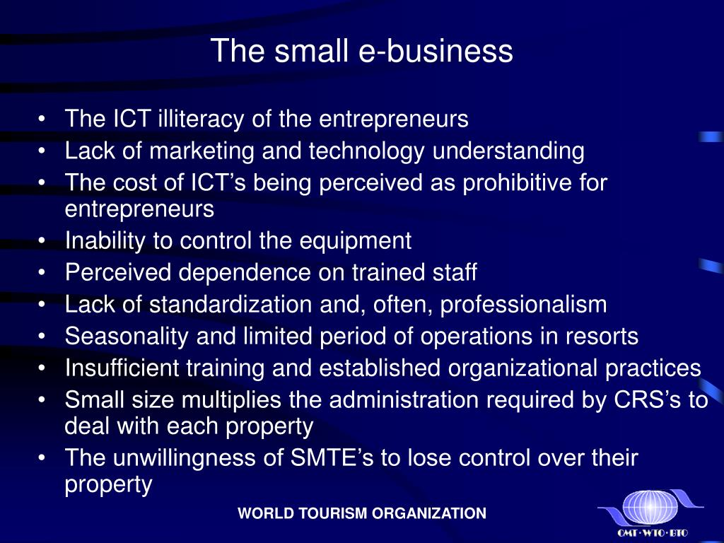 The small e-business