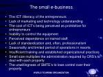 the small e business