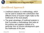 livelihood approach