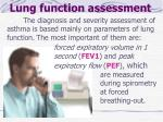 lung function assessment