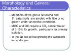 morphology and general characteristics13