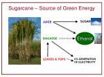 sugarcane source of green energy