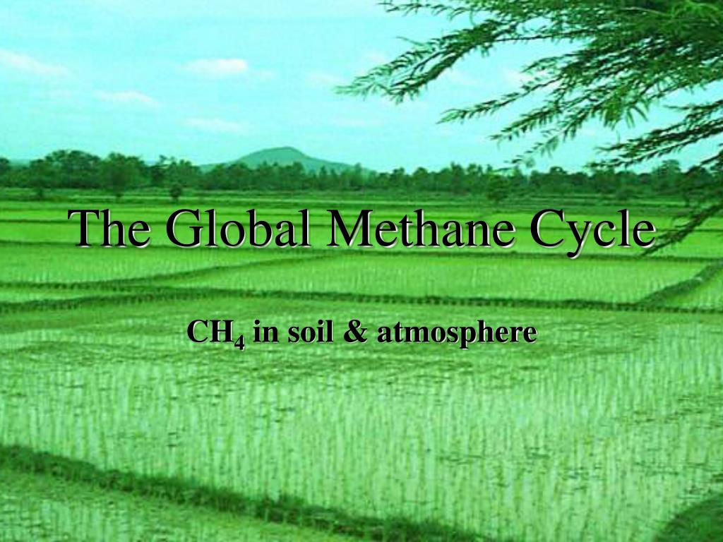 the global methane cycle l.