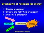 breakdown of nutrients for energy