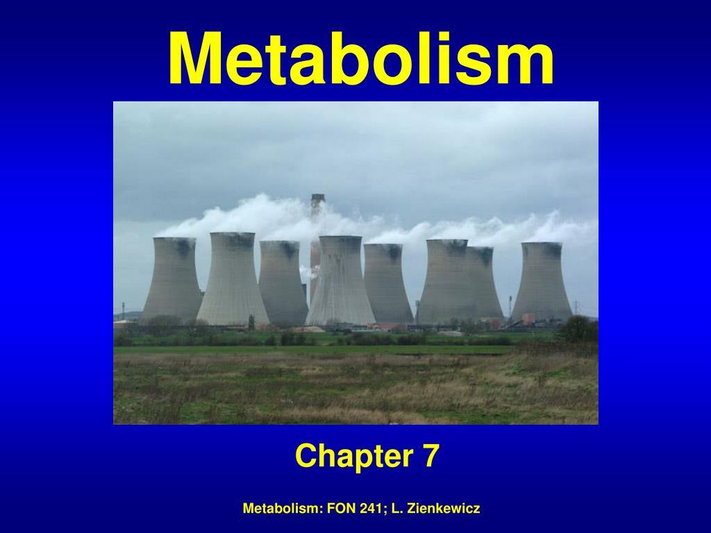 metabolism l.