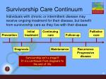 survivorship care continuum
