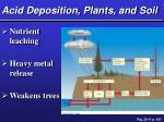 acid deposition plants and soil