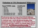 visitation to usa designated wilderness
