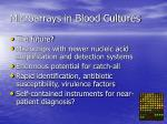 microarrays in blood cultures