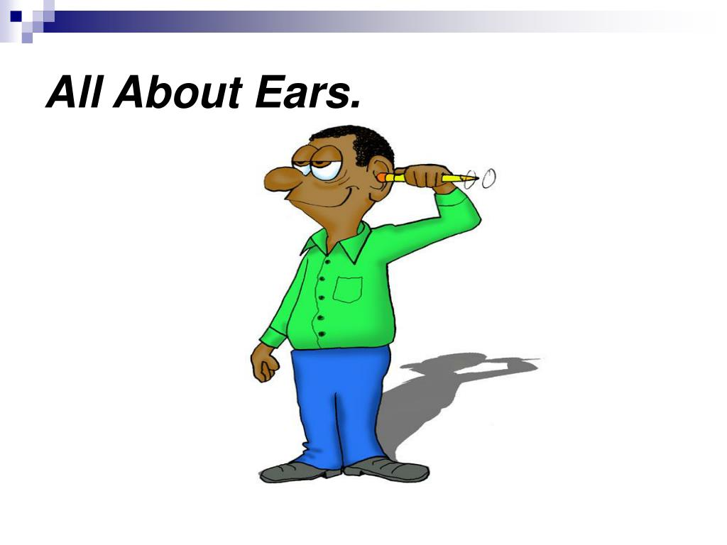 all about ears l.