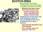 scotch irish