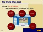 the world wide web10