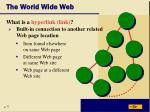the world wide web16