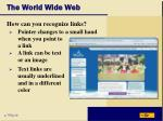 the world wide web17