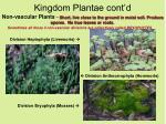kingdom plantae cont d18