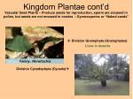 kingdom plantae cont d24