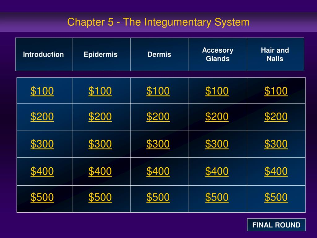 chapter 5 the integumentary system l.