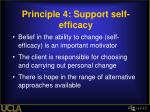 principle 4 support self efficacy