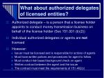 what about authorized delegates of licensed entities