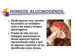 hongos alucinogenos31