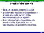 pruebas e inspecci n