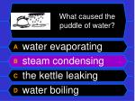 what caused the puddle of water56