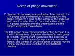 recap of phage movement