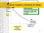 producto marginal y demanda de trabajo