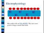 electrophysiology5