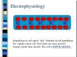 electrophysiology6