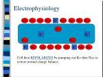 electrophysiology8