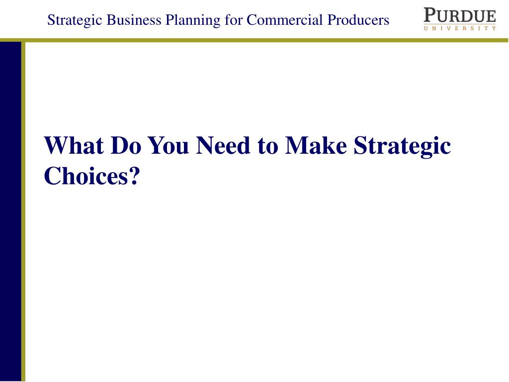 what do you need to make strategic choices l.