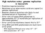 high mutation rates genome replication is inaccurate