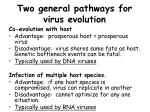 two general pathways for virus evolution