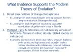 what evidence supports the modern theory of evolution