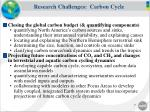 research challenges carbon cycle