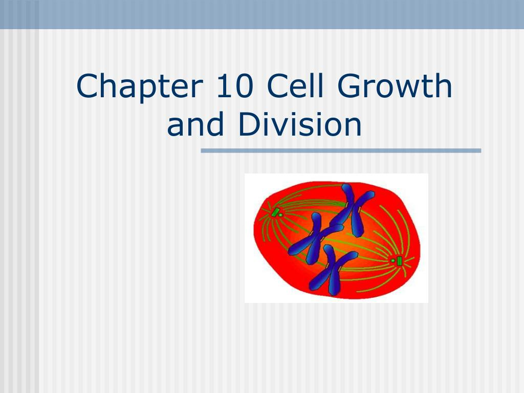 chapter 10 cell growth and division l.