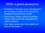 wsm a global perspective