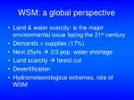 wsm a global perspective32