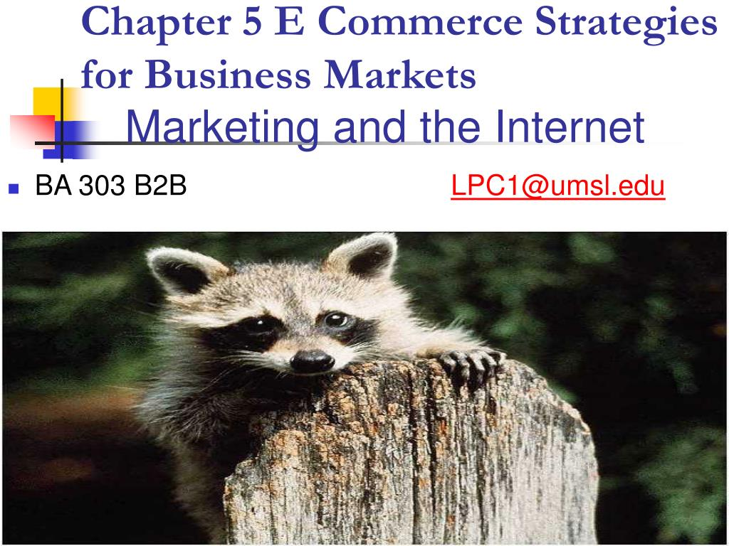 Chapter 5 E Commerce Strategies for Business Markets