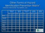 other forms of hazard identification prevention matrix 1