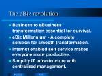 the ebiz revolution