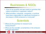 businesses ngos
