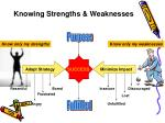 knowing strengths weaknesses