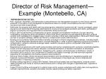 director of risk management example montebello ca