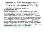 director of risk management example montebello sd ca